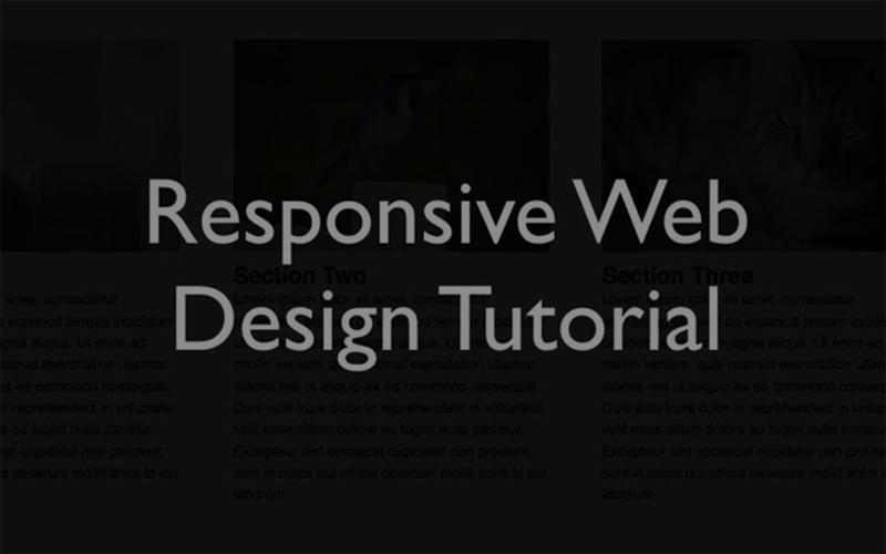 Responsive Web Design Tutorial 재생